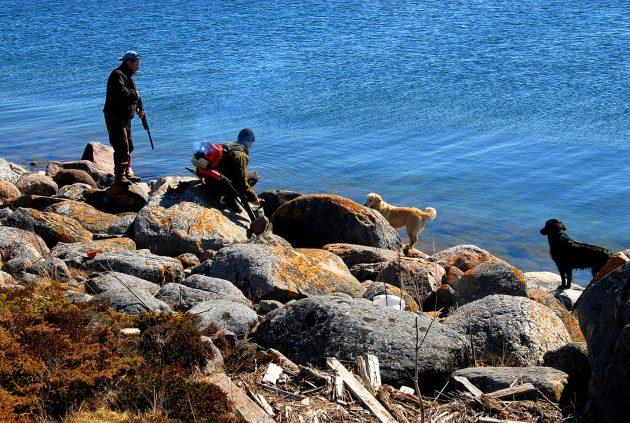 Kivikkoinen ranta, jossa kaksi metsästäjää ja kaksi koiraa. Toinen henkilöistä pitää asetta kädessään ja toisen selässä on lehtipuhallin.